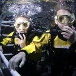 Junior Shark Dive